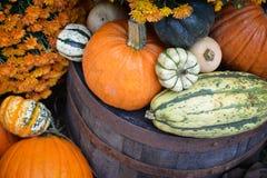 Autumn Outdoor Decor - 6 vibrantes Fotos de Stock