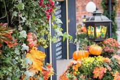 Autumn street decoration background. Harvesting concept royalty free stock photos