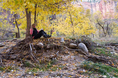 Autumn outdoors Stock Images