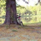 Autumn Outdoors Park And Bicycle Fotografia Stock