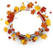 Autumn oval background with maple leaves. Royalty Free Stock Images