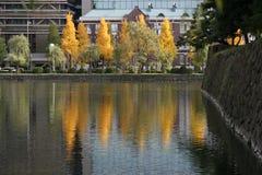 Autumn Over Lake royalty free stock image