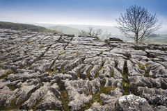 Autumn over limestone pavement at Malham in Yorkshire Dales Nati Stock Images