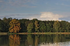 Autumn over the water. The photo shows a water reservoir. Its shores are covered with deciduous trees. It is autumn, some leaves took on a yellow and brown Stock Photos