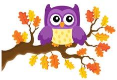 Autumn owl theme image  Stock Photo