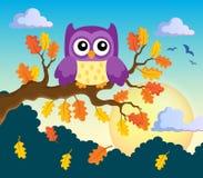 Autumn owl theme image  Royalty Free Stock Photography