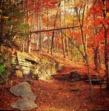Autumn in the Ozarks Stock Photography