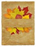 Autumn_Package Imagen de archivo libre de regalías