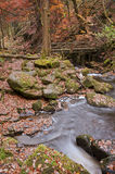 Autumn in Padley Gorge in Peak District Stock Photos