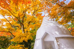 Autumn Pagoda in Kyoto Japan Royalty Free Stock Images