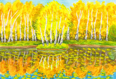 Autumn, painting. Hand painted picture, watercolours - autumn landscape, yellow birch forest with reflection in water and little island with birches. Painted Stock Image