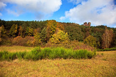 Autumn in the Palatinate Forest Royalty Free Stock Photo