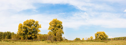 Autumn panorama Royalty Free Stock Photography