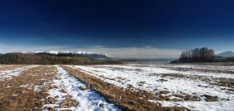 Autumn panorama. Autumn fields and white snow Royalty Free Stock Photos