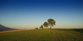 Autumn Panorama Royalty-vrije Stock Foto's