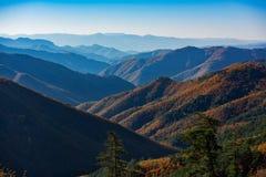 Autumn panorama Stock Photo