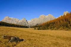 Autumn panorama from Italian Alps. Autumn landscape from italian Alps. Yellow trees. Beautiful dolomites view Stock Images