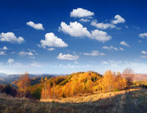 Autumn panorama mountain forest Royalty Free Stock Photos