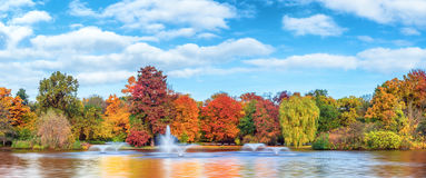 Autumn panorama pond and trees in park. Beautiful fall landscape and cloudy sky. Autumn panorama - yellowed trees in city park in cloudy weather. Pond with stock image