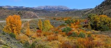 Autumn panorama Royalty Free Stock Image