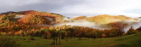 Autumn panorama view with colorful forest - Surean. Autumn panorama view in Sureanu Mountains Royalty Free Stock Photos