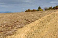 Autumn Panorama with yellow trees of Cherna Gora mountain, Bulgaria Stock Images