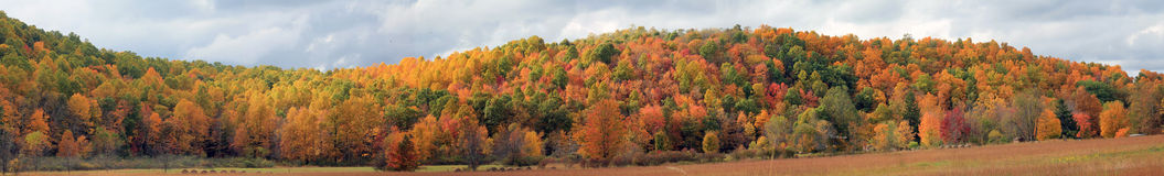Autumn Panoramic. A sweeping panoramic view of Autumn in Virginia royalty free stock photos