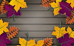 Autumn paper background, colorful tree leaves, wooden backdrop, 3d design for fall season banner, poster or thanksgiving day. Greeting card, space for text stock illustration