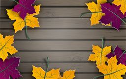 Autumn paper background, colorful tree leaves on wooden backdrop, design for fall season banner, poster or thanksgiving greeting. Autumn paper background Stock Photo