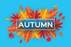Autumn Paper Cut Leaves. Hello Autumn. September flyer template. Rectangle frame. Stock Photo