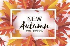 Autumn Paper Cut Leaves Neue Herbstkollektion September-Fliegerschablone Rechteck überlagerter Höhlentunnelrahmen Raum für lizenzfreie abbildung