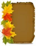 Autumn parchment Stock Image