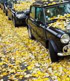 Autumn in Paris. Cars in the street Stock Photography