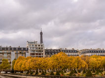 Autumn in Paris , town homes among yellow trees background Eiffel tower Stock Images