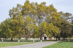Autumn Park à Belgrade serbia photo stock