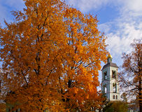 Autumn in the park. Marple and bell tower Royalty Free Stock Image