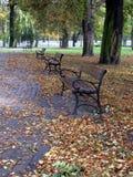Autumn in park Royalty Free Stock Photos