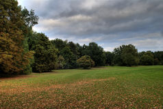 Autumn park. Park landscape on a cloudy autumn day Royalty Free Stock Photo