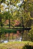 In autumn park. The river in autumn park Stock Photos