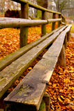 Autumn in the park. A bench in an autumn park - first plane in focus; soft afternoon sunset stock photos