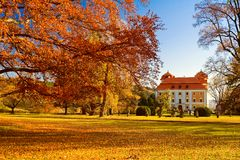 The autumn in park Stock Image