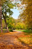 Autumn park Royalty Free Stock Image