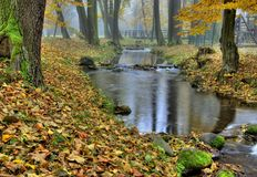 The autumn park Royalty Free Stock Images