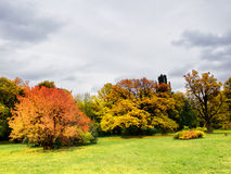Autumn in park Royalty Free Stock Photography