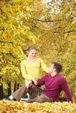 In autumn park Stock Image