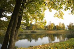 Autumn in the park. Trees and lake royalty free stock image