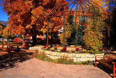 Autumn Park Stock Photo