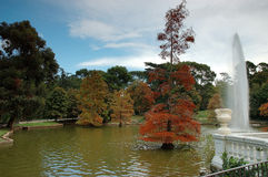 Autumn park. Autumn El Retiro park - Madrid, Spain stock image