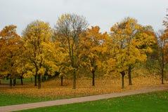 Free Autumn Park Stock Photography - 60060622