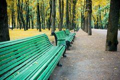 Autumn in park. A line of benches in the perspective, in autumn park royalty free stock photo